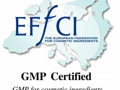GMP EFfCI China