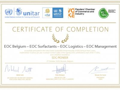 UNITAR Certificate of Completion